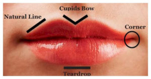 Seven types of lips and ways to take care of them
