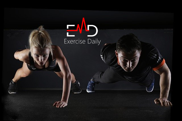 what are the components of physical fitness