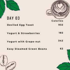 1700 Calories Meal Plan - Day 3