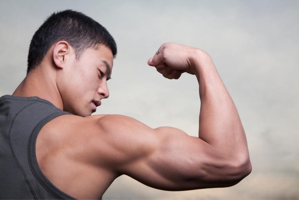 You're Gaining Muscle Mass